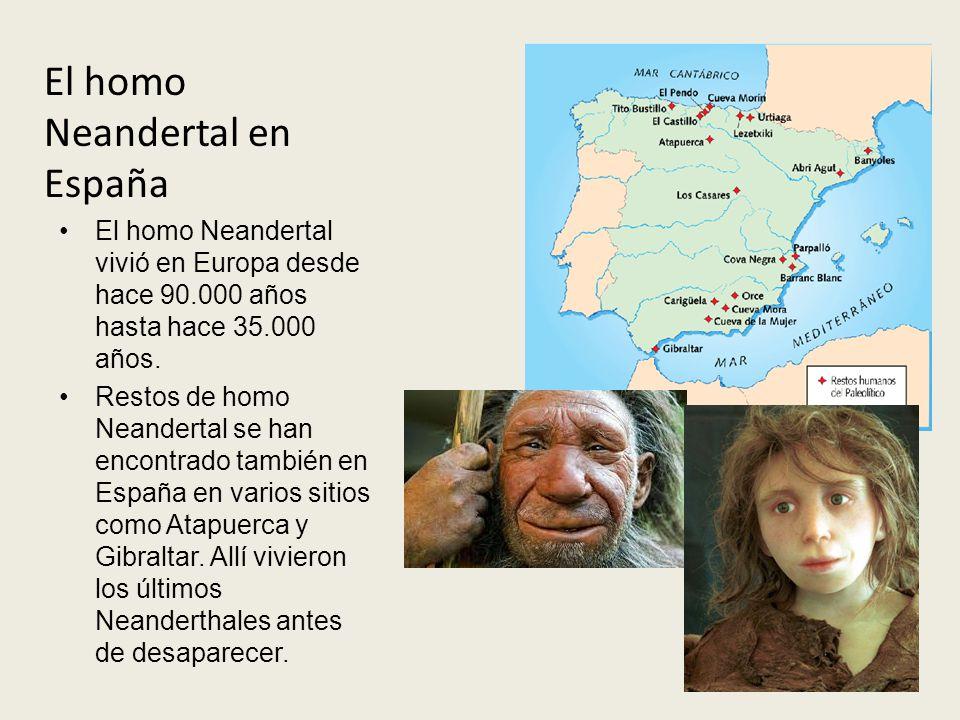 El homo Neandertal vivió en Europa desde hace 90.000 años hasta hace 35.000 años. Restos de homo Neandertal se han encontrado también en España en var