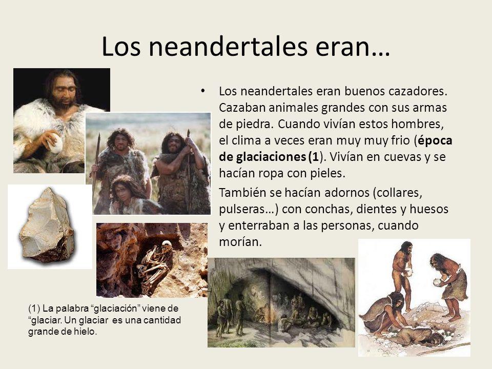 Los neandertales eran… Los neandertales eran buenos cazadores. Cazaban animales grandes con sus armas de piedra. Cuando vivían estos hombres, el clima