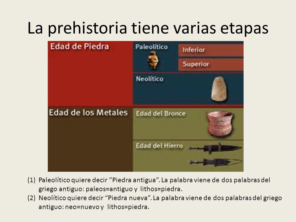 La prehistoria tiene varias etapas (1)Paleolítico quiere decir Piedra antigua. La palabra viene de dos palabras del griego antiguo: paleos=antiguo y l