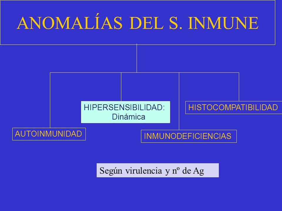 En uno de los trabajos, publicado en Immunity, se demuestra que los síntomas de la enfermedad desaparecen cuando se bloquea una proteína llamada S100A