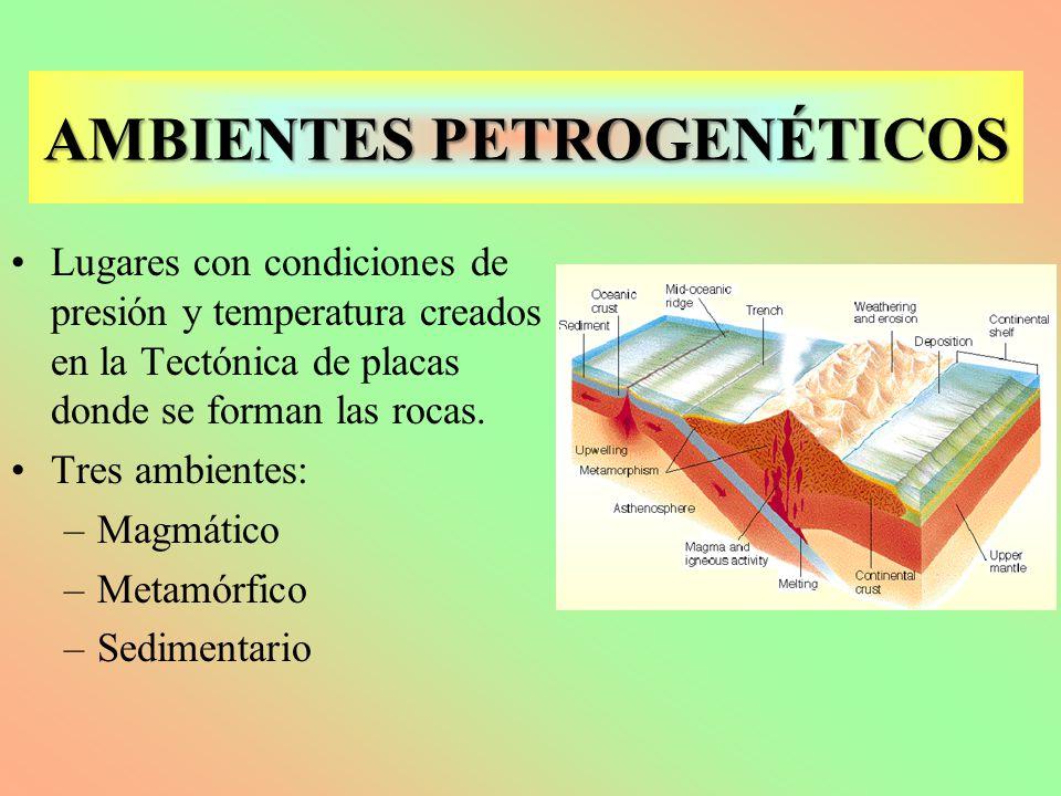 AMBIENTES PETROGENÉTICOS Lugares con condiciones de presión y temperatura creados en la Tectónica de placas donde se forman las rocas. Tres ambientes: