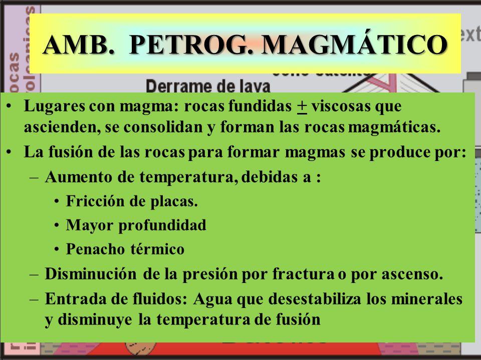 AMB. PETROG. MAGMÁTICO Lugares con magma: rocas fundidas + viscosas que ascienden, se consolidan y forman las rocas magmáticas. La fusión de las rocas