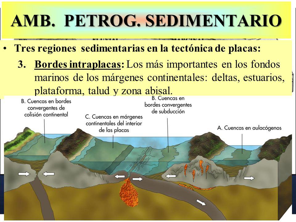 AMB. PETROG. SEDIMENTARIO Tres regiones sedimentarias en la tectónica de placas: 3.Bordes intraplacas: Los más importantes en los fondos marinos de lo