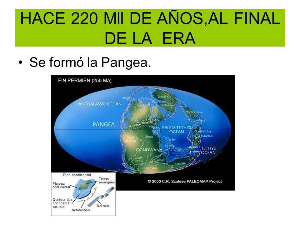 HACE 220 Mll DE AÑOS,AL FINAL DE LA ERA Se formó la Pangea.