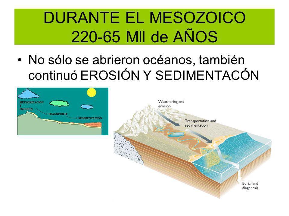 DURANTE EL MESOZOICO 220-65 Mll de AÑOS No sólo se abrieron océanos, también continuó EROSIÓN Y SEDIMENTACÓN