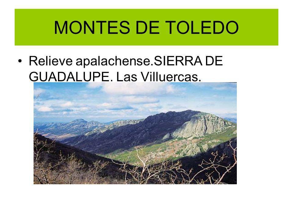 MONTES DE TOLEDO Relieve apalachense.SIERRA DE GUADALUPE. Las Villuercas.