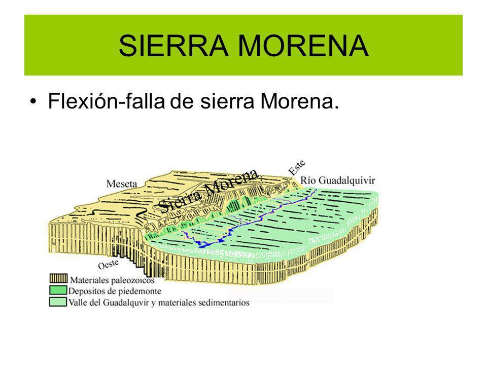 SIERRA MORENA Flexión-falla de sierra Morena.
