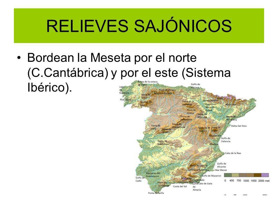 RELIEVES SAJÓNICOS Bordean la Meseta por el norte (C.Cantábrica) y por el este (Sistema Ibérico).