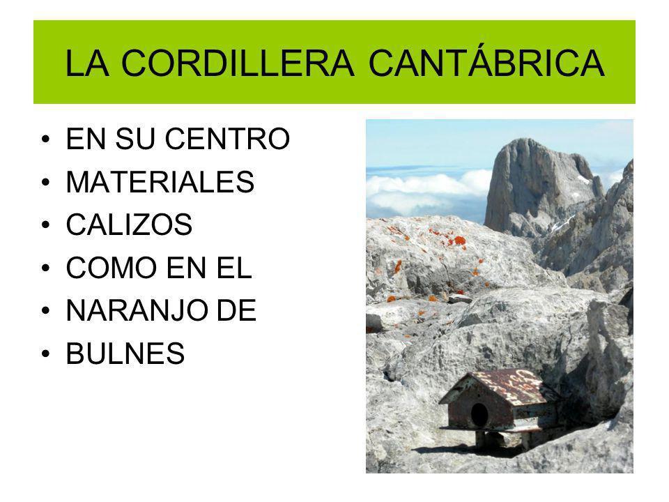 LA CORDILLERA CANTÁBRICA EN SU CENTRO MATERIALES CALIZOS COMO EN EL NARANJO DE BULNES