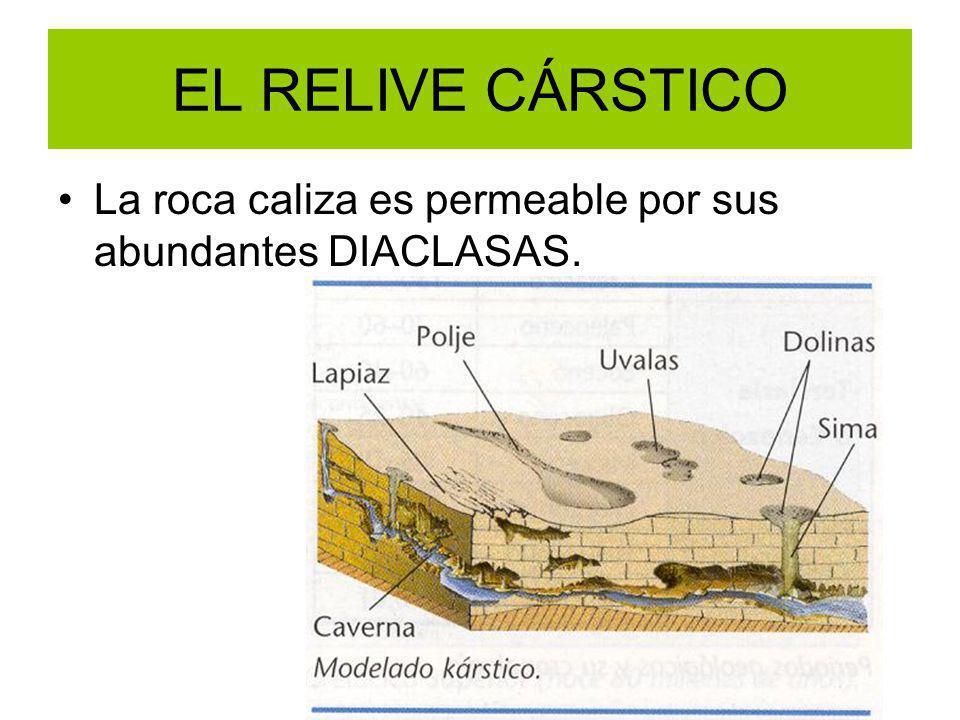 EL RELIVE CÁRSTICO La roca caliza es permeable por sus abundantes DIACLASAS.