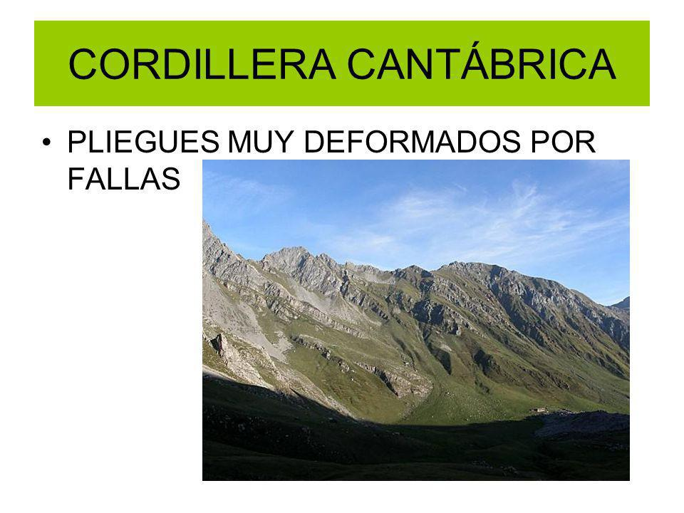 CORDILLERA CANTÁBRICA PLIEGUES MUY DEFORMADOS POR FALLAS