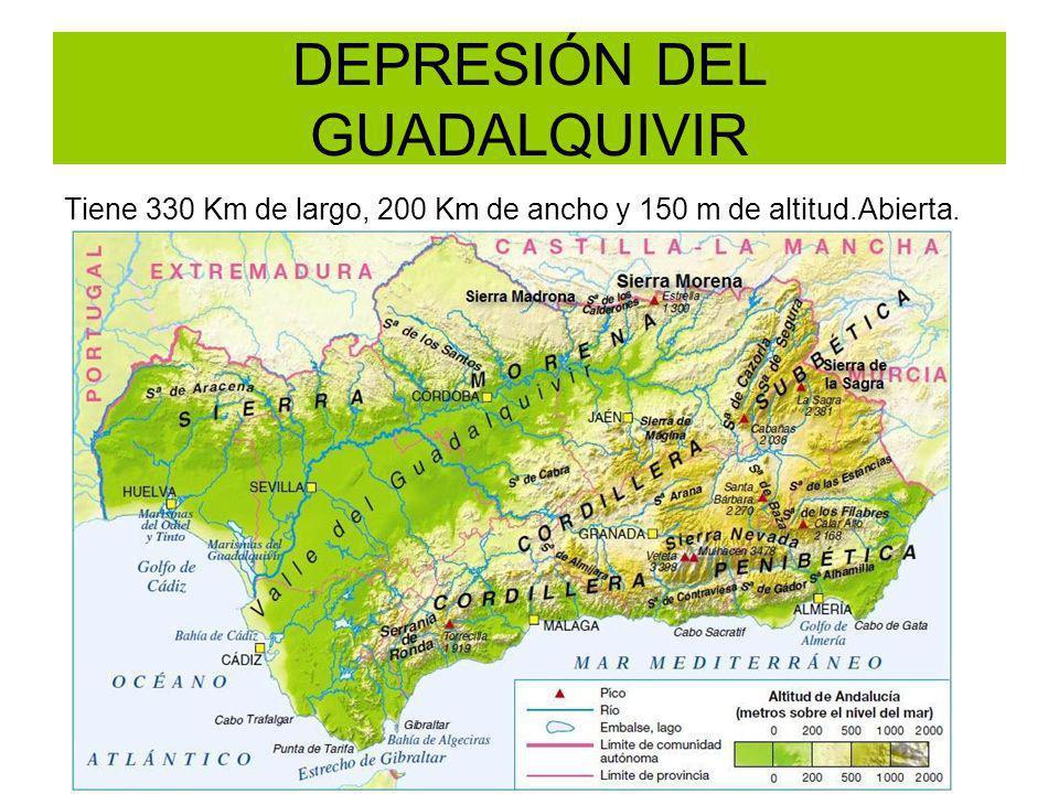 DEPRESIÓN DEL GUADALQUIVIR Tiene 330 Km de largo, 200 Km de ancho y 150 m de altitud.Abierta.