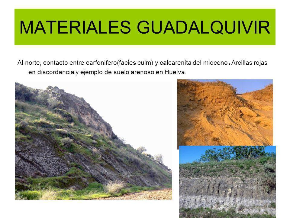 MATERIALES GUADALQUIVIR Al norte, contacto entre carfonifero(facies culm) y calcarenita del mioceno. Arcillas rojas en discordancia y ejemplo de suelo