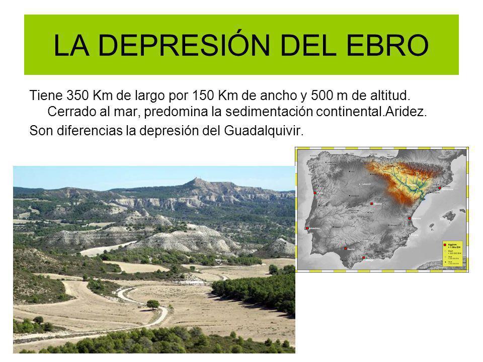 LA DEPRESIÓN DEL EBRO Tiene 350 Km de largo por 150 Km de ancho y 500 m de altitud. Cerrado al mar, predomina la sedimentación continental.Aridez. Son
