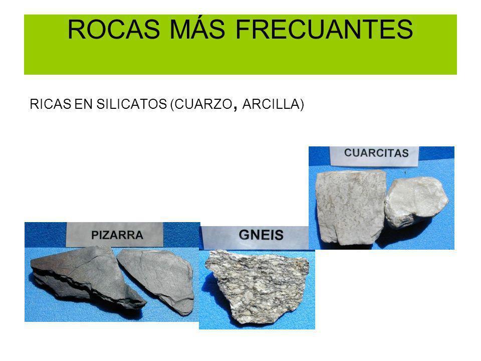 LA CORDILLERA CANTÁBRICA De oeste a este aumenta el espesor mesozoico y en Picos de Europa nos encontramos con un relieve cárstico.