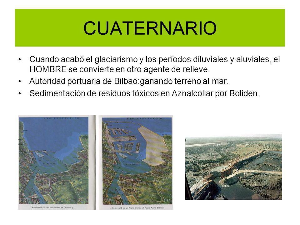 CUATERNARIO Cuando acabó el glaciarismo y los períodos diluviales y aluviales, el HOMBRE se convierte en otro agente de relieve. Autoridad portuaria d