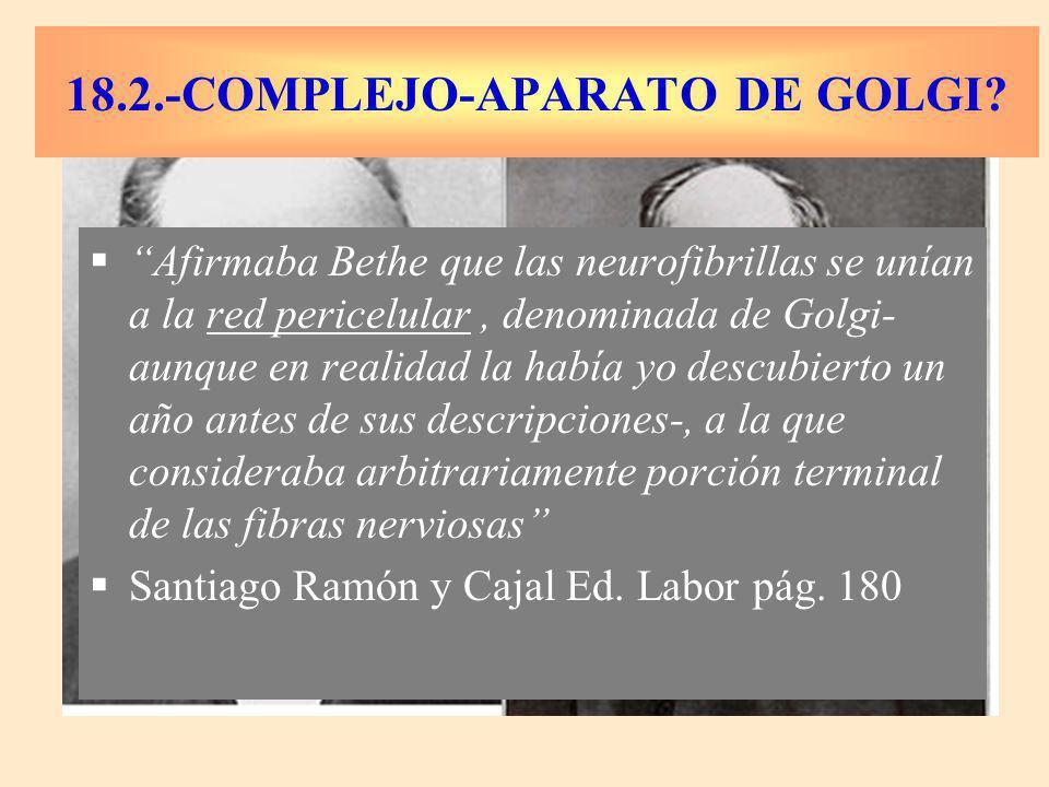 Afirmaba Bethe que las neurofibrillas se unían a la red pericelular, denominada de Golgi- aunque en realidad la había yo descubierto un año antes de sus descripciones-, a la que consideraba arbitrariamente porción terminal de las fibras nerviosas Santiago Ramón y Cajal Ed.