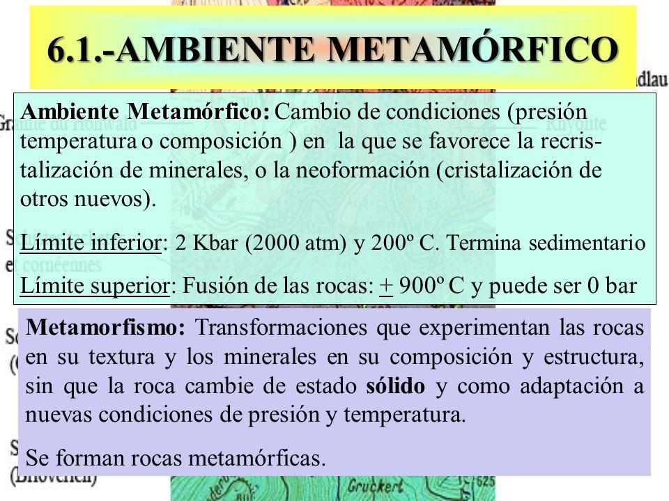 6.4.- GRADOS DE FOLIACIÓN 6.4.- GRADOS DE FOLIACIÓN A.Pizarrosidad: Los cristales se disponen formando una estructura hojosa debida a un metamorfismo de baja intensidad.