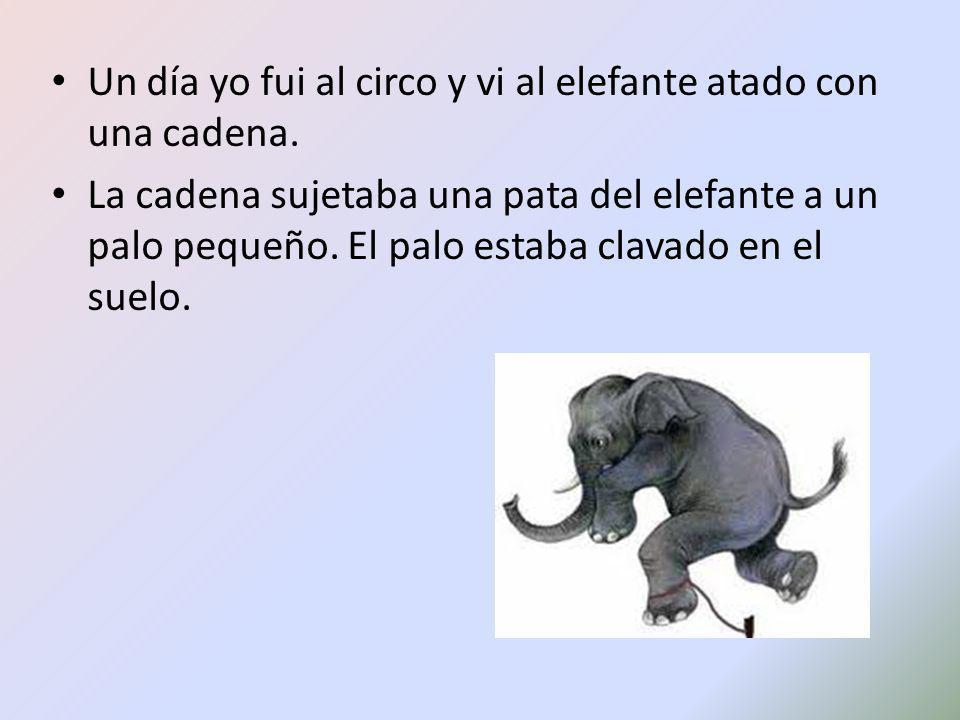 Un día yo fui al circo y vi al elefante atado con una cadena. La cadena sujetaba una pata del elefante a un palo pequeño. El palo estaba clavado en el
