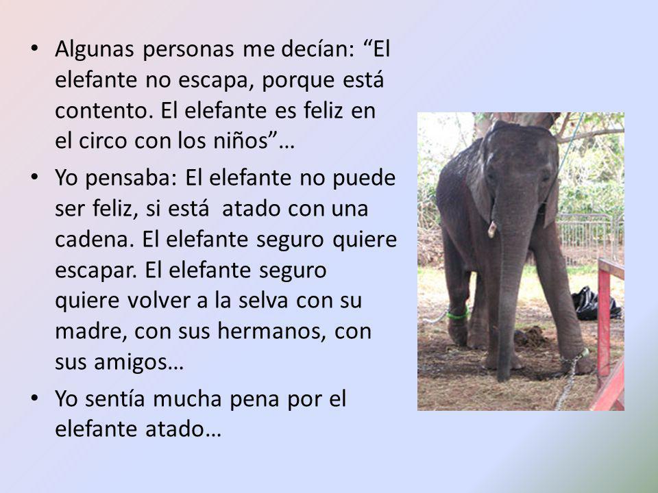 Algunas personas me decían: El elefante no escapa, porque está contento. El elefante es feliz en el circo con los niños… Yo pensaba: El elefante no pu