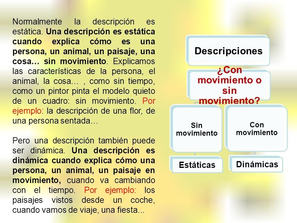 Normalmente la descripción es estática. Una descripción es estática cuando explica cómo es una persona, un animal, un paisaje, una cosa… sin movimient