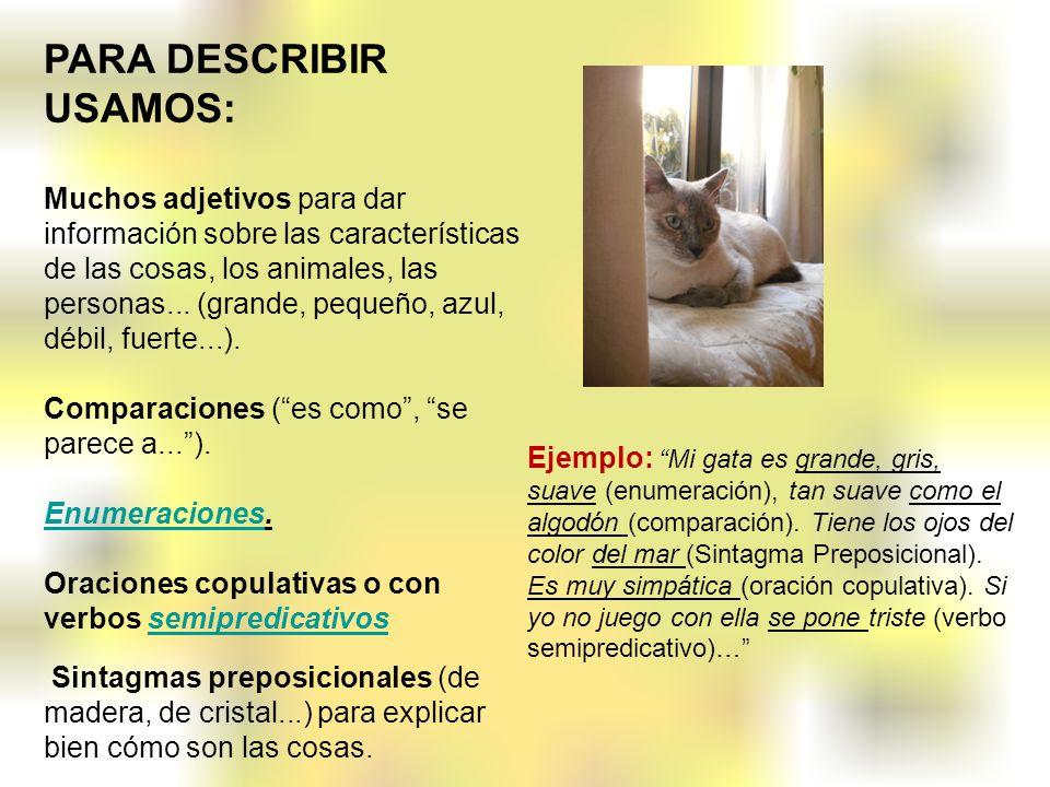 PARA DESCRIBIR USAMOS: Muchos adjetivos para dar información sobre las características de las cosas, los animales, las personas... (grande, pequeño, a