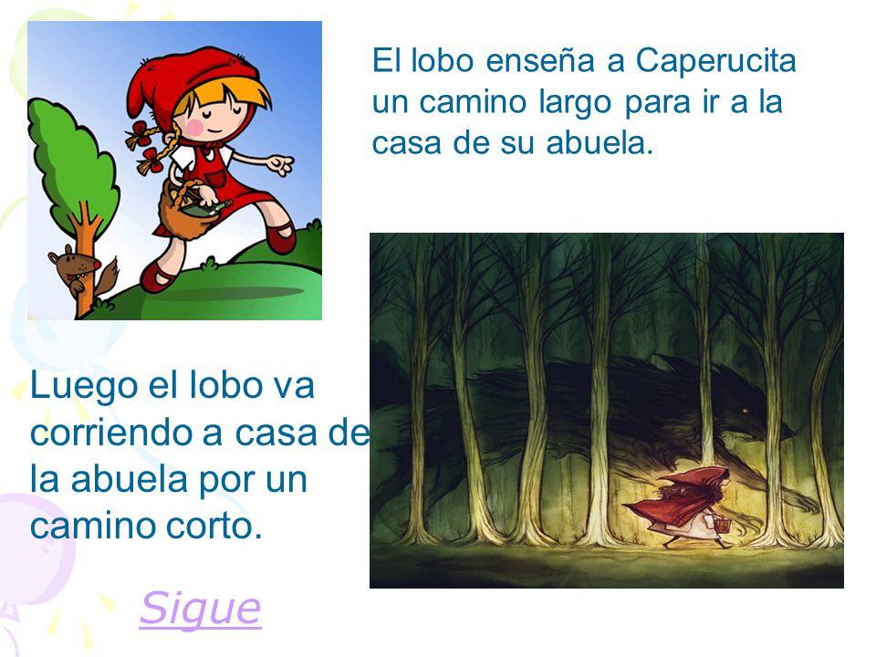El lobo enseña a Caperucita un camino largo para ir a la casa de su abuela. Sigue Luego el lobo va corriendo a casa de la abuela por un camino corto.