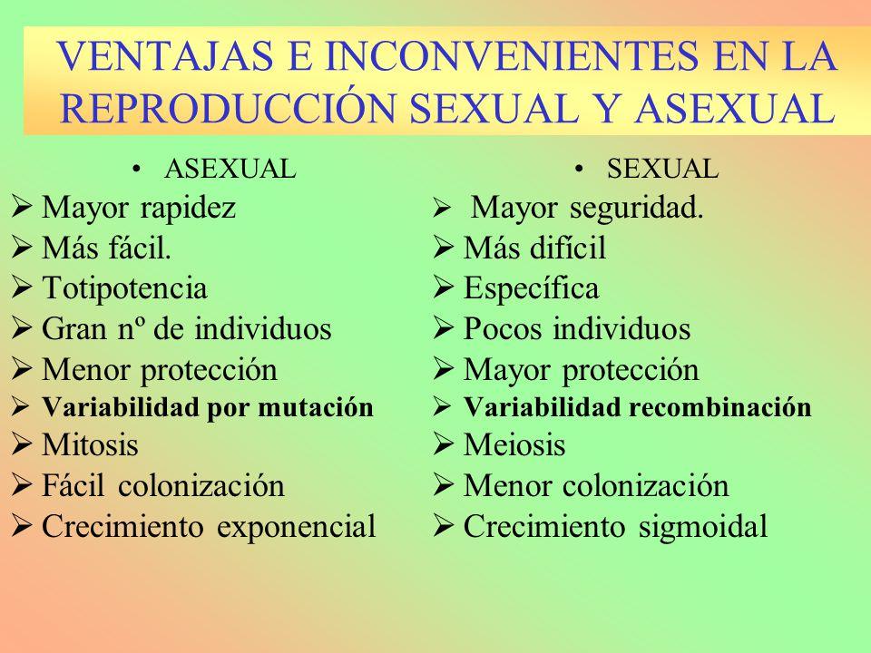VENTAJAS E INCONVENIENTES EN LA REPRODUCCIÓN SEXUAL Y ASEXUAL ASEXUAL Mayor rapidez Más fácil. Totipotencia Gran nº de individuos Menor protección Var