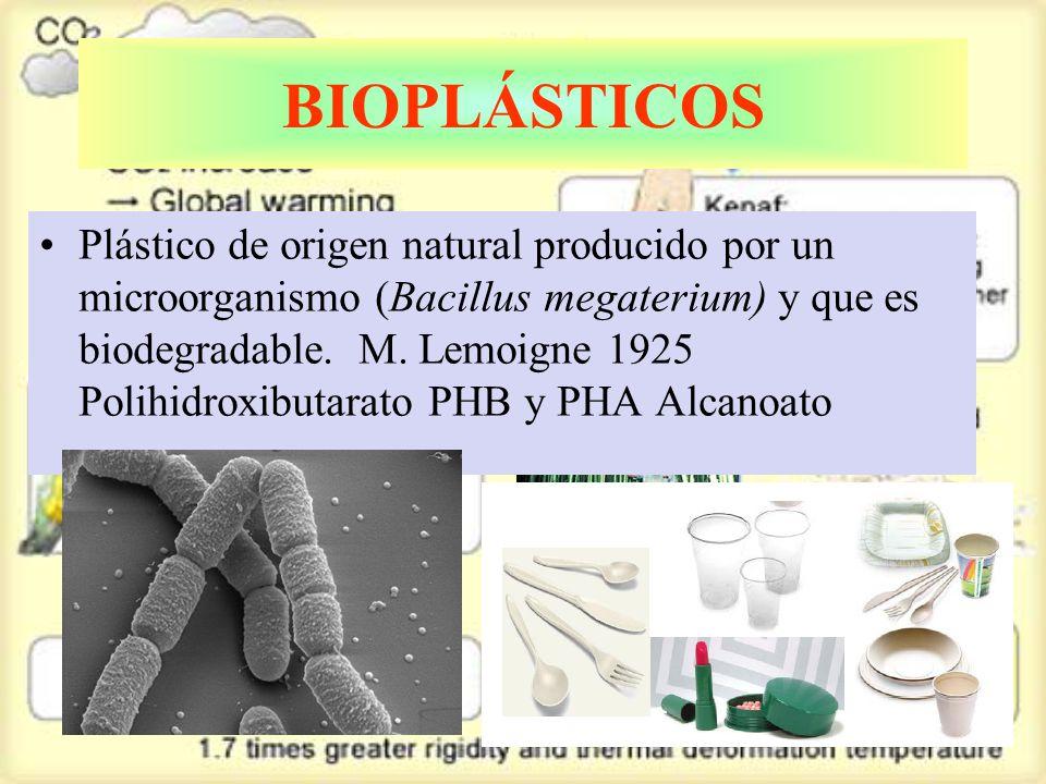 BIOPLÁSTICOS Plástico de origen natural producido por un microorganismo (Bacillus megaterium) y que es biodegradable.