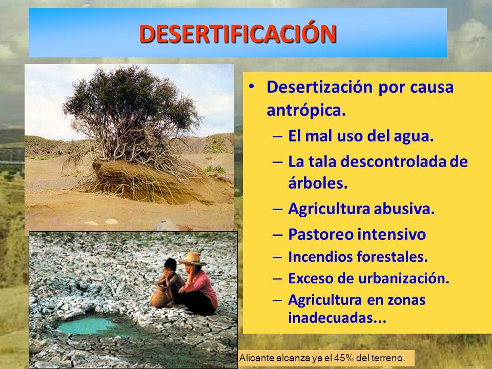 La desertización en Granada, Almería, Murcia y Alicante alcanza ya el 45% del terreno. Desertización por causa antrópica. – El mal uso del agua. – La