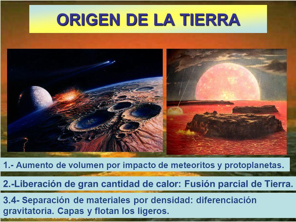 ORIGEN DE LA TIERRA 2.-Liberación de gran cantidad de calor: Fusión parcial de Tierra. 3.4- Separación de materiales por densidad: diferenciación grav