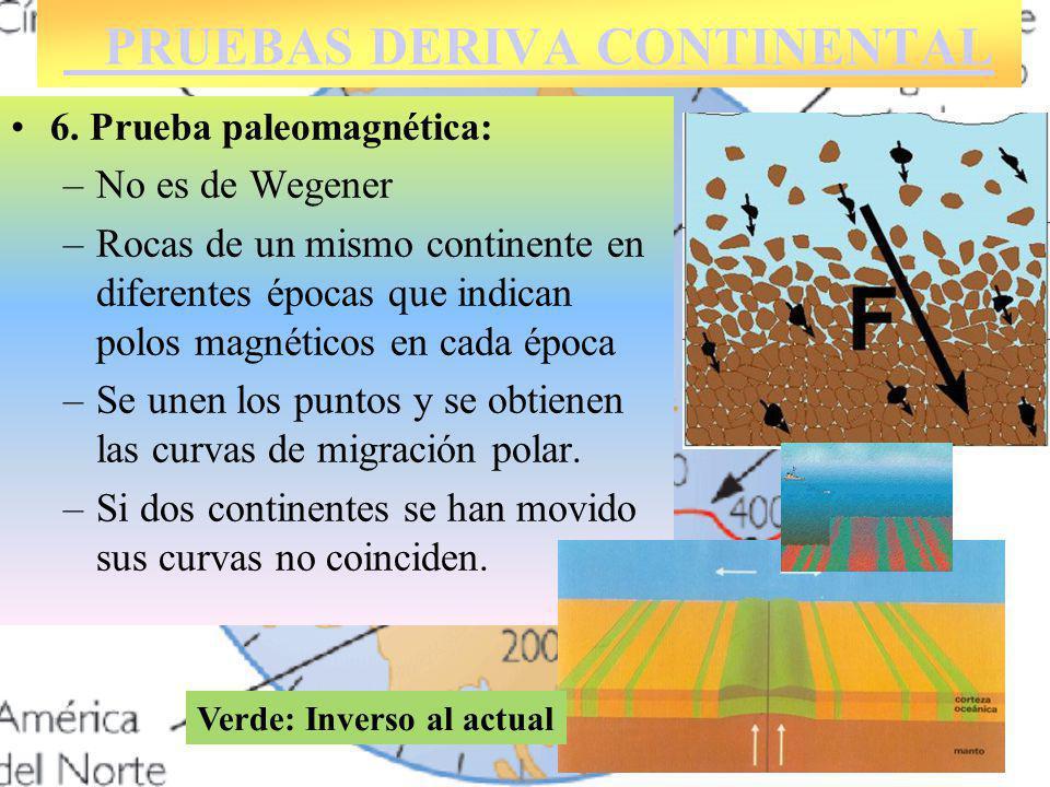 6. Prueba paleomagnética: –No es de Wegener –Rocas de un mismo continente en diferentes épocas que indican polos magnéticos en cada época –Se unen los