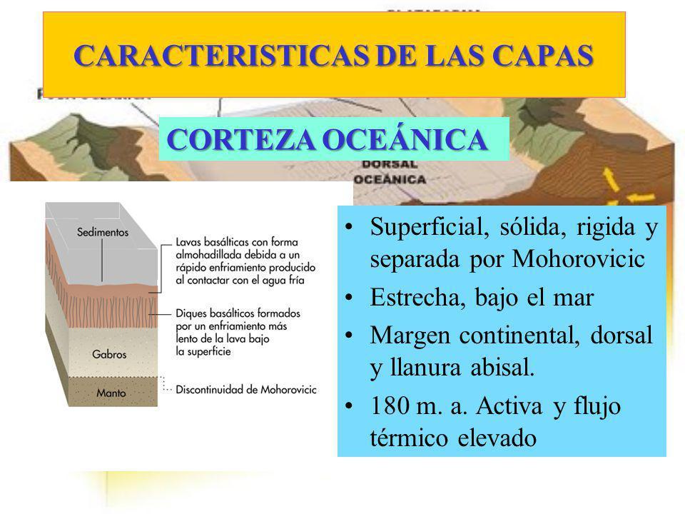 CARACTERISTICAS DE LAS CAPAS Superficial, sólida, rigida y separada por Mohorovicic Estrecha, bajo el mar Margen continental, dorsal y llanura abisal.