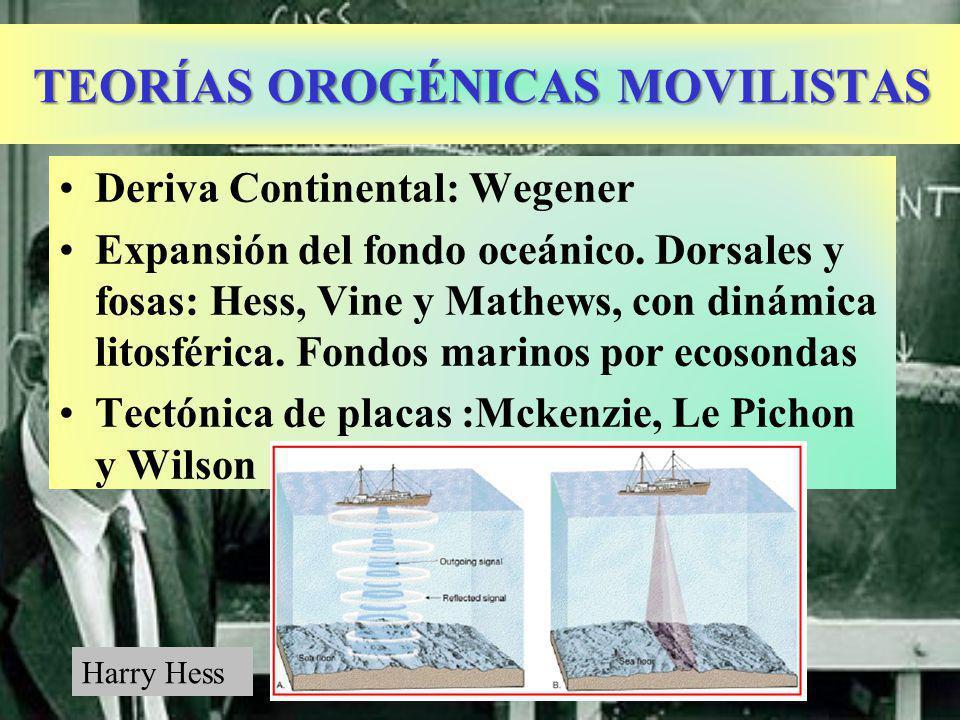 TEORÍAS OROGÉNICAS MOVILISTAS Deriva Continental: Wegener Expansión del fondo oceánico.