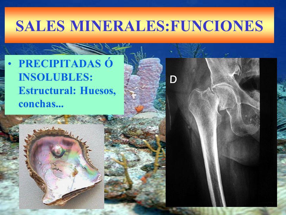 SALES MINERALES:FUNCIONES PRECIPITADAS Ó INSOLUBLES: Estructural: Huesos, conchas...
