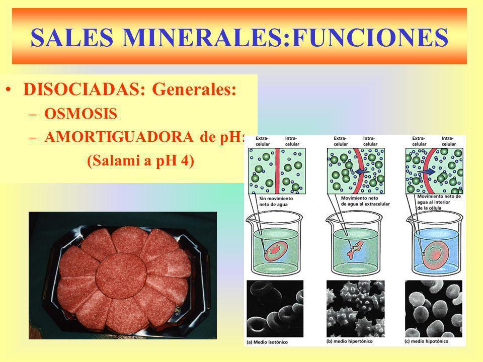 SALES MINERALES:FUNCIONES DISOCIADAS: Generales: –OSMOSIS –AMORTIGUADORA de pH: (Salami a pH 4)