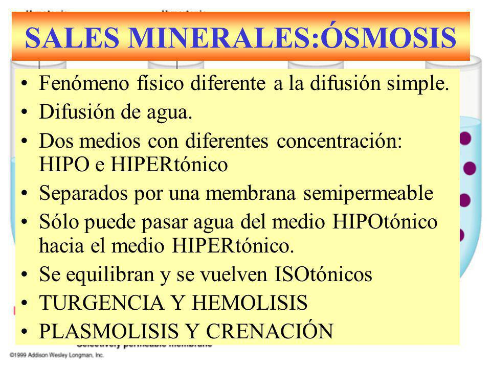 Fenómeno físico diferente a la difusión simple. Difusión de agua. Dos medios con diferentes concentración: HIPO e HIPERtónico Separados por una membra