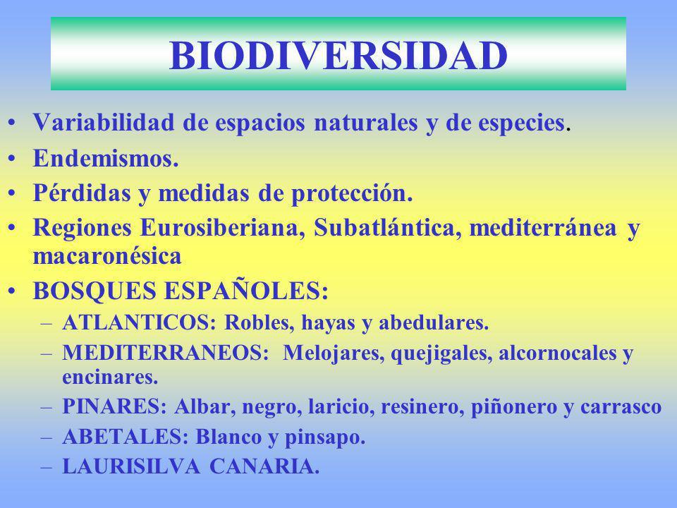 BIODIVERSIDAD Variabilidad de espacios naturales y de especies. Endemismos. Pérdidas y medidas de protección. Regiones Eurosiberiana, Subatlántica, me