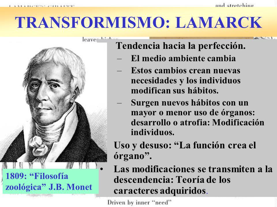 TRANSFORMISMO: LAMARCK Tendencia hacia la perfección.