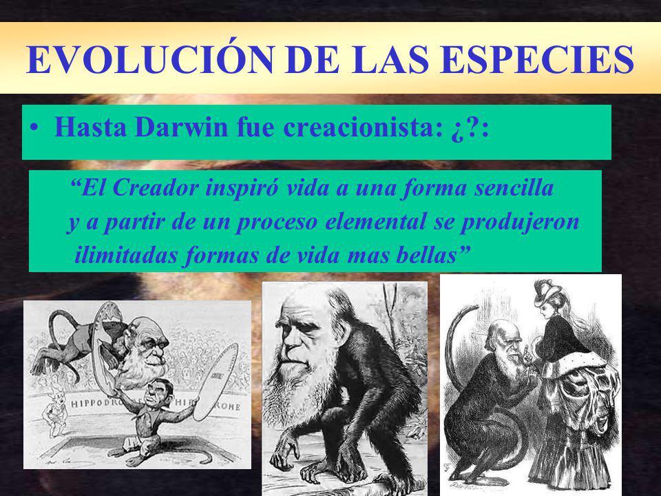 Hasta Darwin fue creacionista: ¿?: EVOLUCIÓN DE LAS ESPECIES El Creador inspiró vida a una forma sencilla y a partir de un proceso elemental se produjeron ilimitadas formas de vida mas bellas