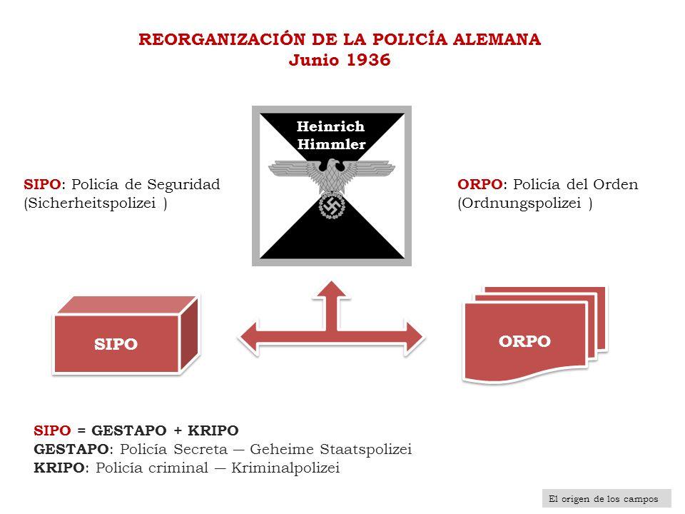 REORGANIZACIÓN DE LA POLICÍA ALEMANA Junio 1936 SIPO = GESTAPO + KRIPO GESTAPO : Policía Secreta Geheime Staatspolizei KRIPO : Policía criminal Krimin