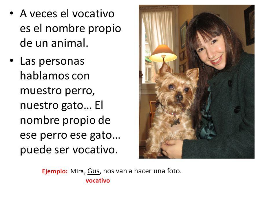 A veces el vocativo es el nombre propio de un animal. Las personas hablamos con muestro perro, nuestro gato… El nombre propio de ese perro ese gato… p