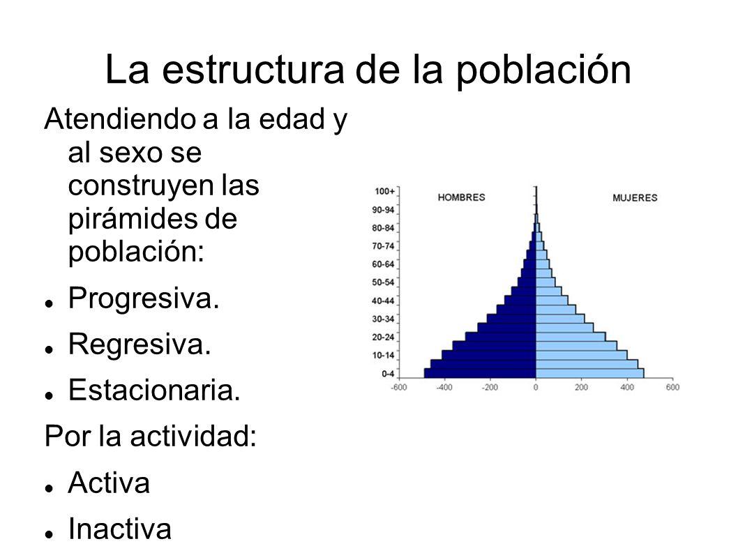 La estructura de la población Atendiendo a la edad y al sexo se construyen las pirámides de población: Progresiva. Regresiva. Estacionaria. Por la act