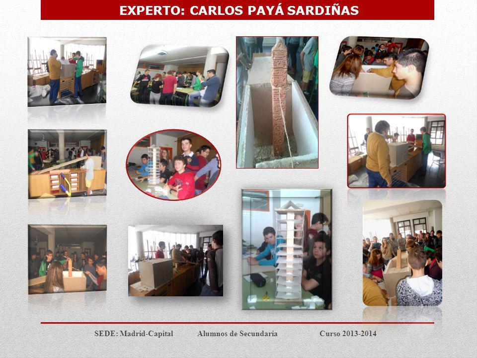 SEDE: Madrid-Capital Alumnos de Secundaria Curso 2013-2014 TALLER: ENIGMAS DE LA COMUNICACIÓN Y EXPRESIÓN SOCIAL EXPERTO : Don Guillermo Ballenato Prieto.