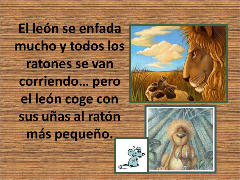 El león dice al ratón: - Te voy a comer… Pero el ratón dice al león: - Amigo león, por favor no me comas.