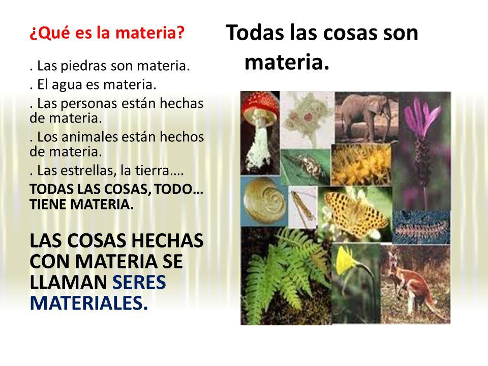 ¿Qué es la materia.Todas las cosas son materia.. Las piedras son materia..