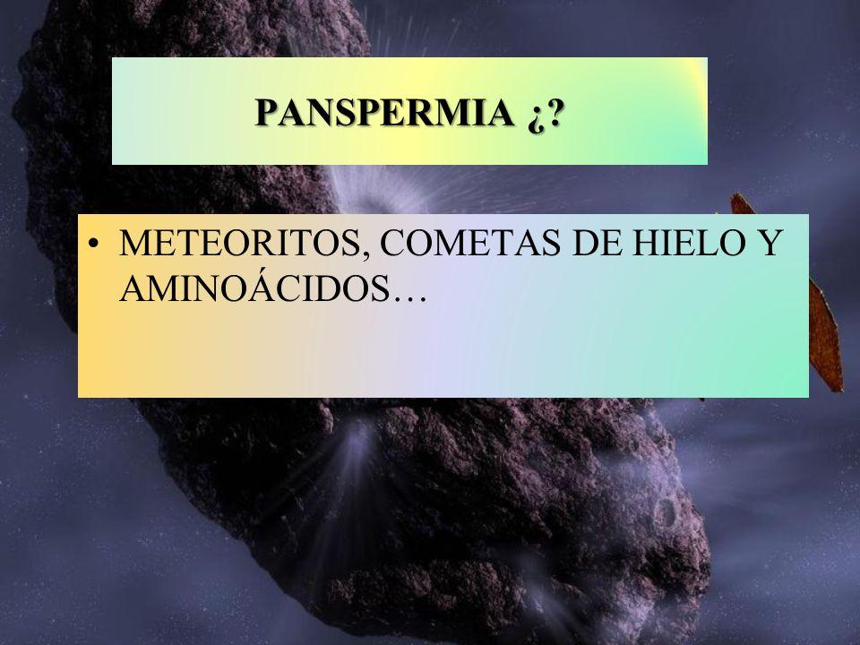 METEORITOS, COMETAS DE HIELO Y AMINOÁCIDOS… PANSPERMIA ¿?