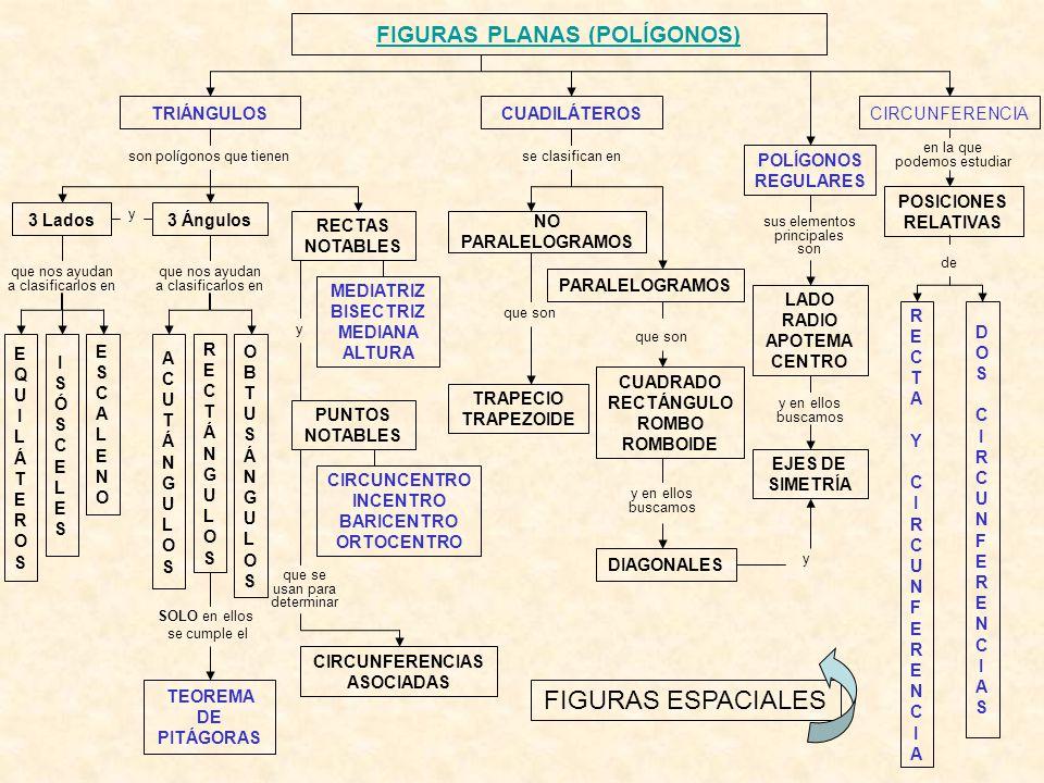 FIGURAS PLANAS (POLÍGONOS) CIRCUNFERENCIA FIGURAS ESPACIALES TRIÁNGULOSCUADILÁTEROS EQUILÁTEROSEQUILÁTEROS POLÍGONOS REGULARES son polígonos que tiene