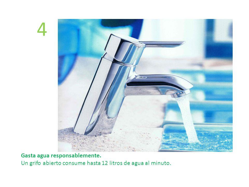 4 Gasta agua responsablemente. Un grifo abierto consume hasta 12 litros de agua al minuto.