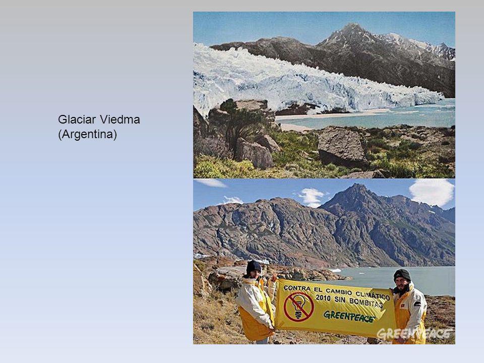 Glaciar Viedma (Argentina)
